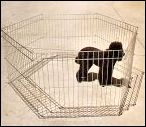 Folding Puppy Pen from Pet Network. This pen has 6 panels 70cm wide and 60cm high zinc plated.